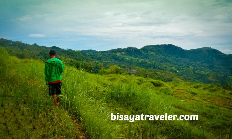A Solo Visit To Argao's Gorgeous Rice Terraces