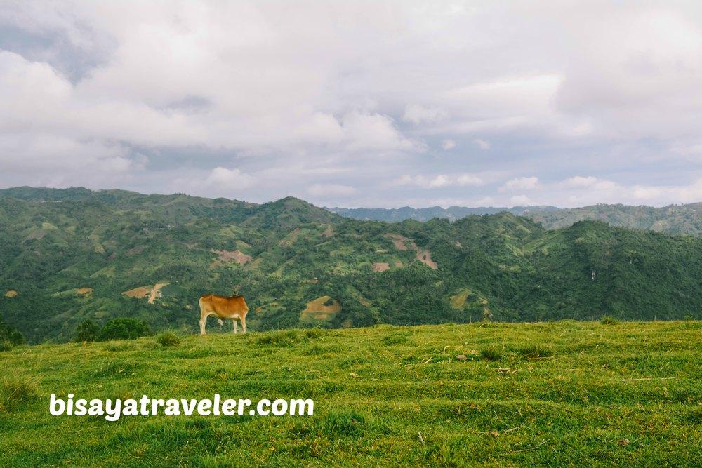 Mount Tagaytay: A Picture-Perfect Peak With Awe-Inspiring Panoramas