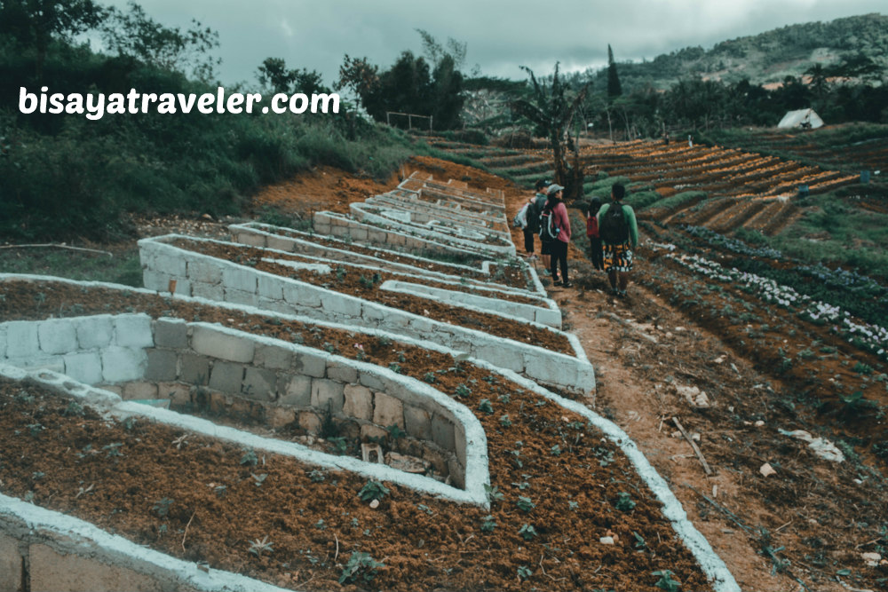 Techno Demo Farm: The Perfect Appetizer To A Scenic Dalaguete Adventure