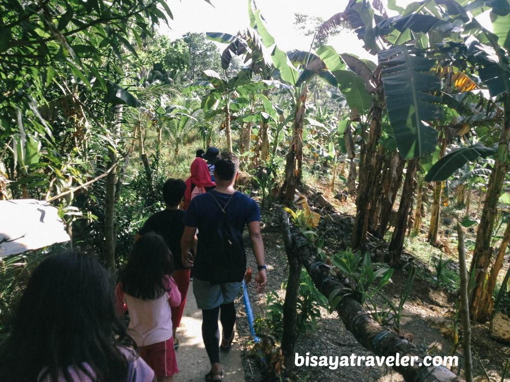 Udlom Falls: The Mesmerizing And Towering Cascade Of Lamac, Cebu