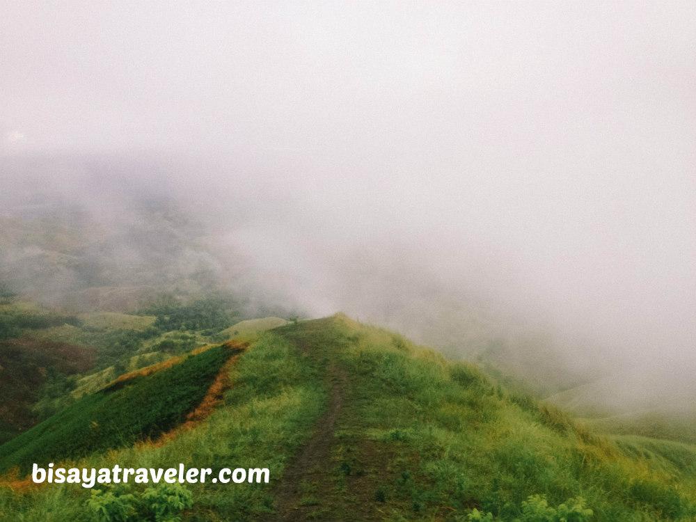 Binabaje Hills, Bohol: Soaking Up Alicia's Strikingly Surreal Beauty