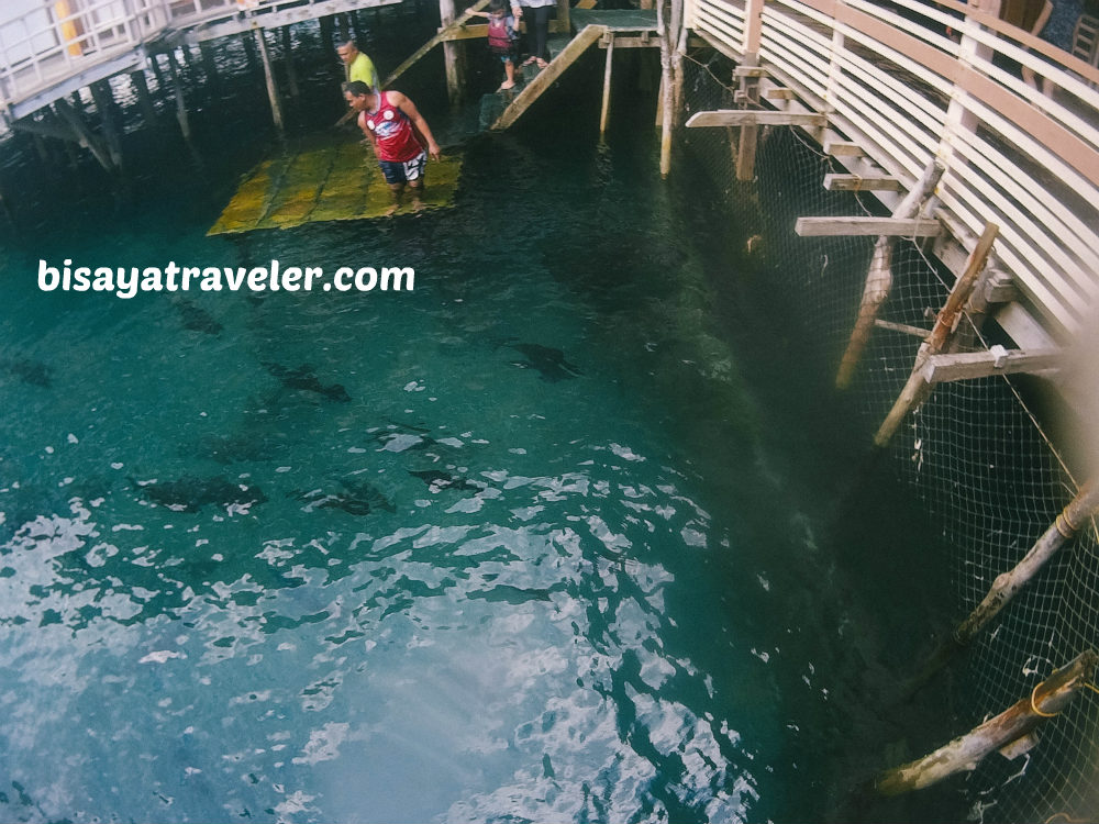 Tinuy-an Falls And Enchanted River: I'm Addicted To Surigao del Sur