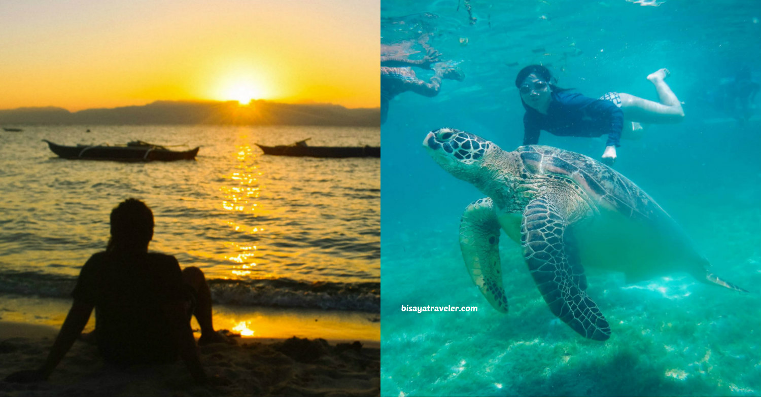 11 Insanely Fun Things To Do In Moalboal, Cebu